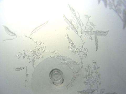 バカラのミモザのワイングラス、デザイン接写